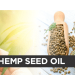 Hemp Oil compared to Hemp Seed Oil