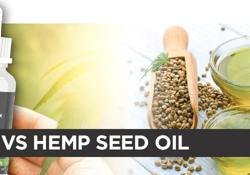 Benefits of Hemp Oil vs Hemp Seed Oil