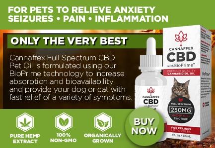 Cannaffex Pet Dog Cat CBD Oil Canada
